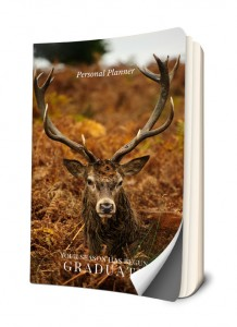 elk journal fall season