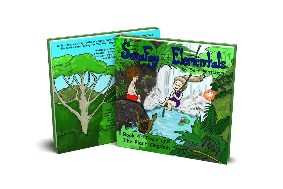 Sara Fay and the Elemntals book4