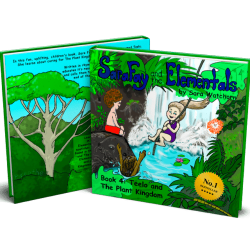 Sara Fay and the Elementals: Book 4